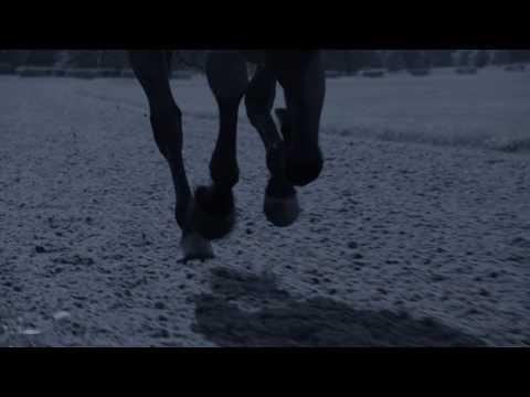Longines Presents Horse Racing 2014 (Amazing Footage!)