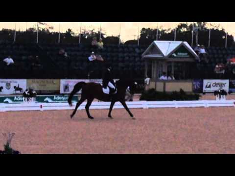 Susan Jaccoma Scores 56.7 in the Grand Prix Special at the Global Dressage Festival Wellington CDIW