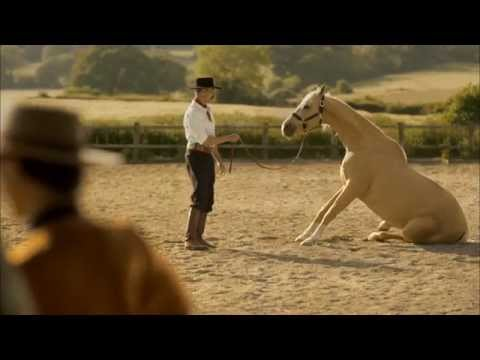 Great Expedia Horse Whisperer Commercial