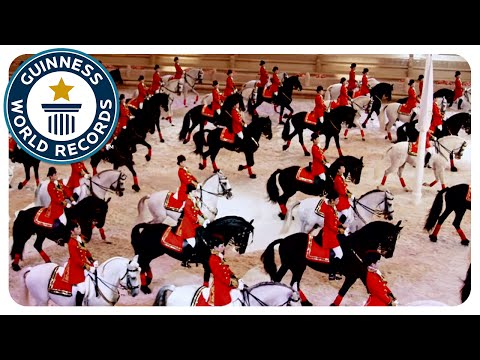 China sets Guinness World Records: Largest Dressage Horse Display