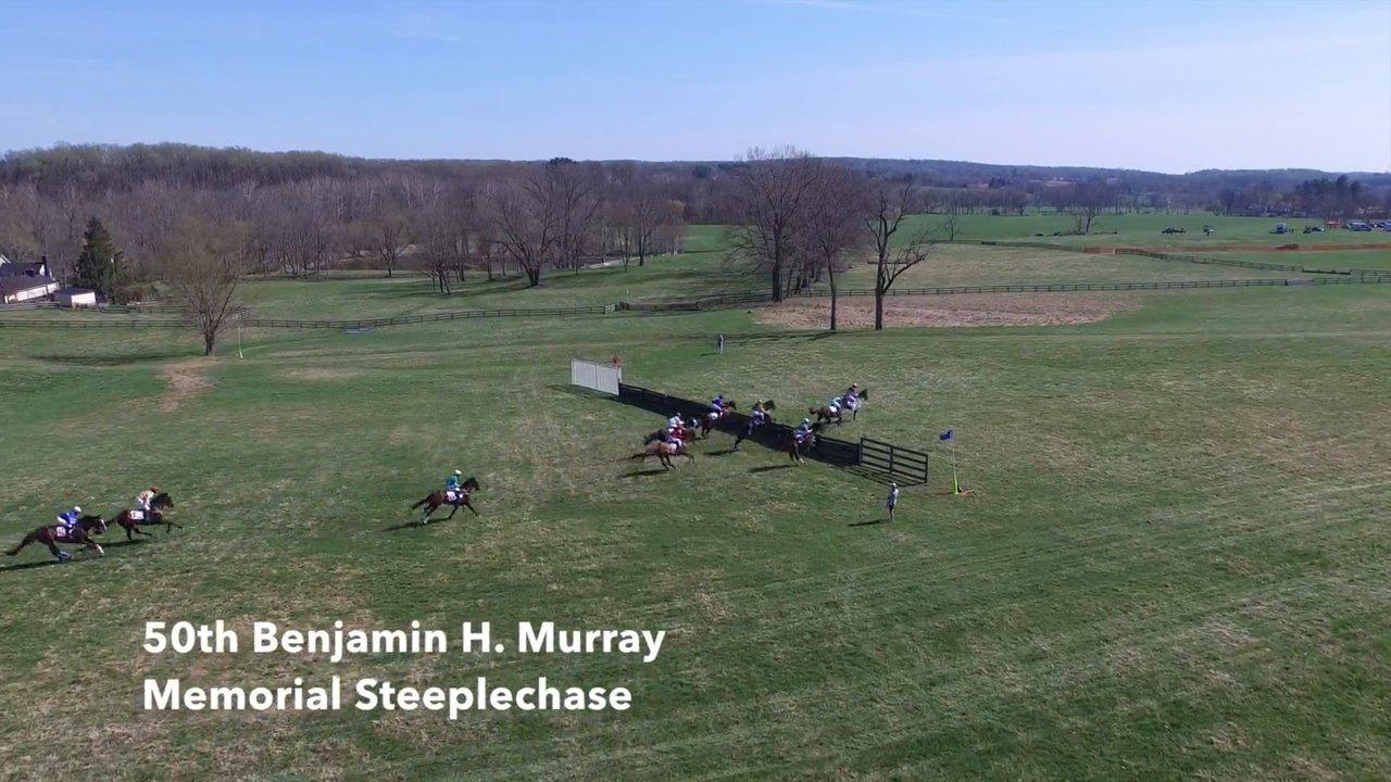 Steeplechase Race Filmed by Drone Start-to-Finish