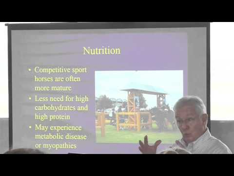 Nutrition for the High Performance Sport Horse