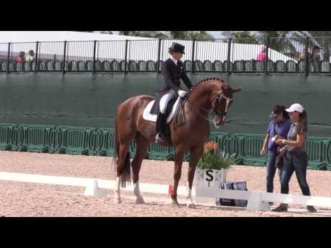 3 Tips to Immediately Improve Your Dressage Scores