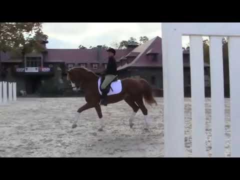 Show Jumping Legend George Morris Riding a Grand Prix Dressage Horse