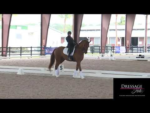 Robert Dover: Breaking Down the Effectiveness of The Aids in Dressage