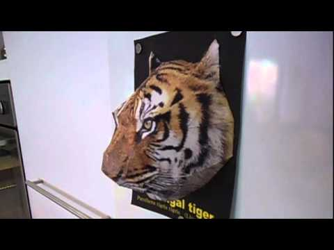 Paper Tiger Guards Refrigerator