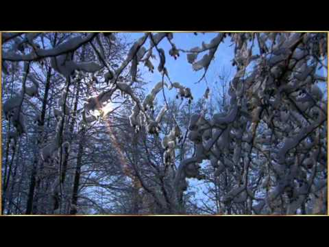 New Year Wishes - We wish you a Merry Christmas and a Happy New Year by Enya.wmv