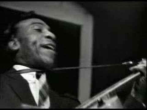 T-Bone Walker- Don't Throw Your Love On Me So Strong