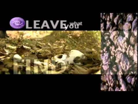What is Leave No Trace