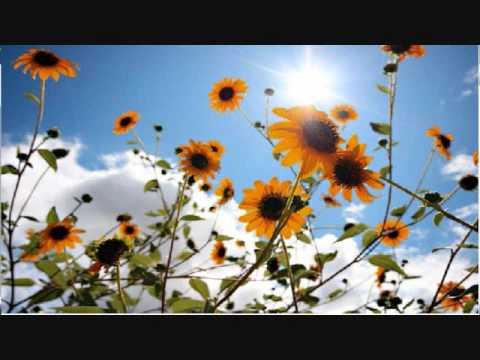 Joshua Radin - Brand New Day (Lyrics)