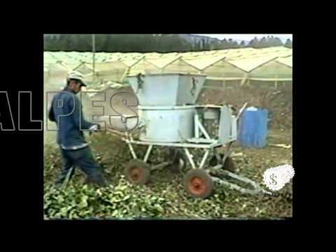 Picadoras de desechos orgánicos. Ingenieros Analpes Ltda. Bogota D.C. Colombia