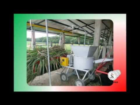 Cable Vía para ganaderia - ceba intensiva. Ingenieros Analpes Ltda. Bogota D.C. Colombia