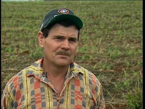 AGRO20: AGRICULTURA DE CONSERVACIÓN EN EL SUR DE BRAZIL