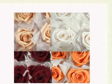 Preservación de Flores Naturales de Exportación
