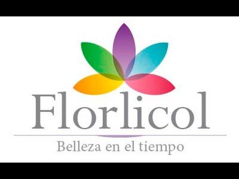 FLORLICOL FLORES LIOFILIZADAS DE COLOMBIA