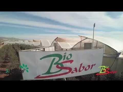 Invernadero | Greenhouse | Serre | ТЕПЛИЦЫ  Biosabor by J. Huete