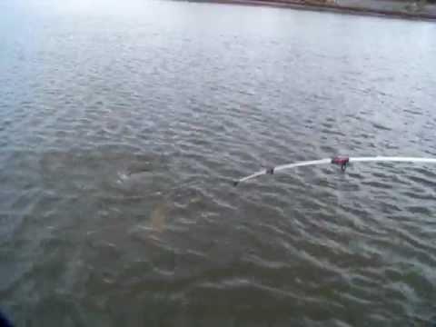 carp fishing in nj part 2