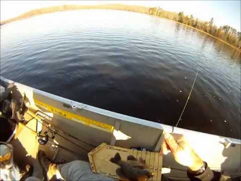 Fish Chaser TV: Big Bad Beautiful Bodacious Bluegills!