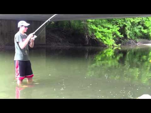 Creek Sunfishing
