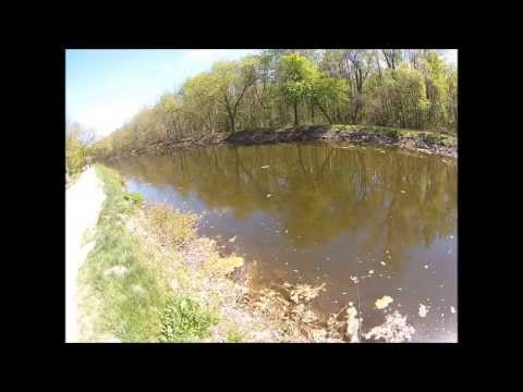 Fishing with Big Mike episode 11 pikerel