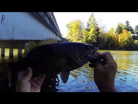 100813--A Good 20 mins of Smallmouth Bass Fishing 6 fish on