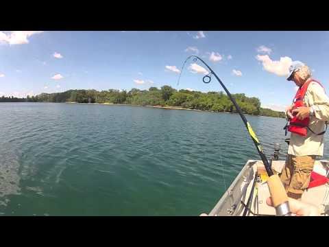 Dropshotting and Cranking Bass