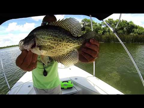 "Lake Decker ""Crappie Day"""