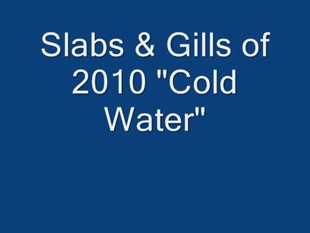 2010 Spring cold water panfish_0002