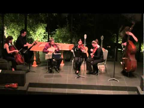 Vivaldi's Lute Concerto, RV93 (Largo)