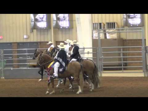 2013 Sooner State Peruvian Horse Show Barrida of Champions