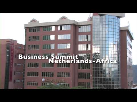 Business Summit Netherlands - Africa 2010