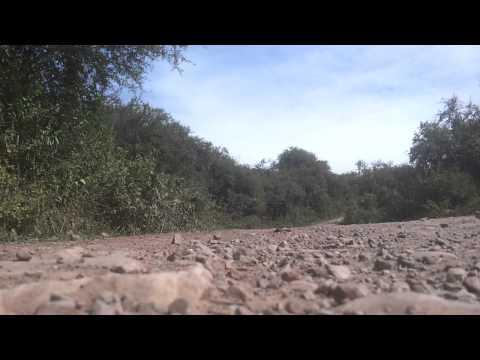 Robby Gordon - Dakar 2014 - Salta