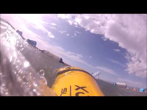 Play with Dolphin powered whit SUEX XJOY7, FORTA TRIAL BEACH & CREPAS WATCHES