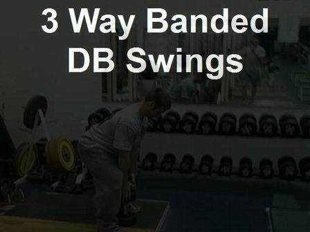 3 Way Banded DB Swings