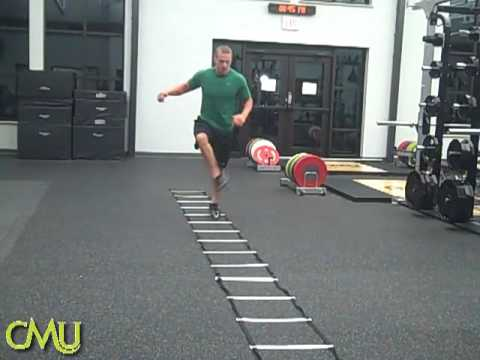 Tennessee Tech Strength & Conditioning Circuit - Strength