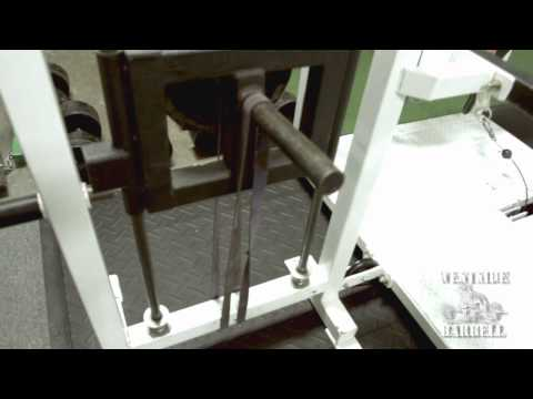 Westside Barbell Belt Squat Machine