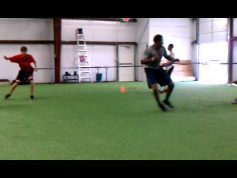 Movement Training w/ Coach Taylor