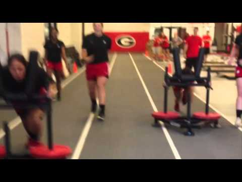 GEORGIA SOFTBALL STRENGTH 2014