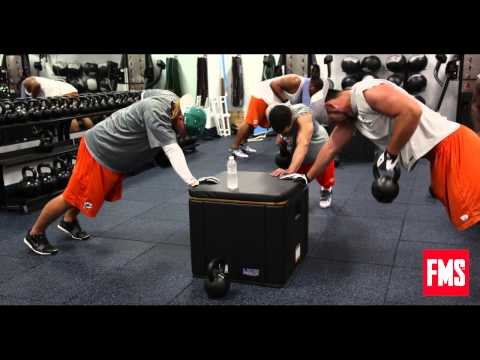 Dolphins Strength Coach Talks Combine & Training Philosophy