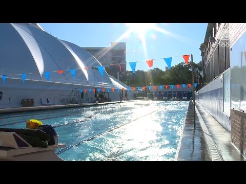 Gators Olympics - Swim Training Feature