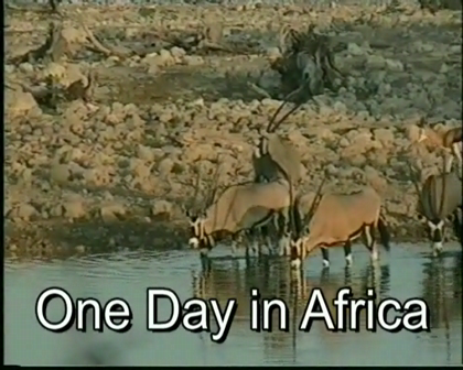 One Day Africa