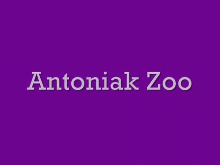 Antoniak Zoo