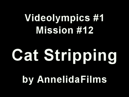 Videolympics 01.12 - Cat Stripping