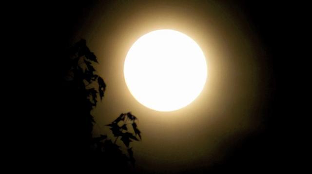 Super Moon Haiku Double Feature