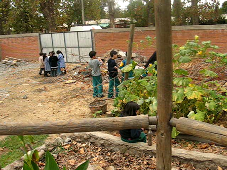 Env. Edu. Prog. Building the garden within the Rep. of Brasil College / Progr. Edu. Amb. Construyendo el Jardín dentro de la Escuela Rep. del Brasil