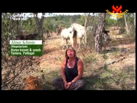 """""""A New We,"""" documentary by Stefan Wolf: Eco-Villages & Eco-Communities Across Europe"""