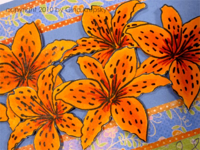 Coloring Tiger Lilies