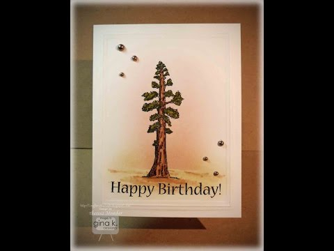 Lone Redwood Tree Card