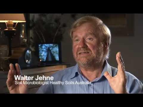 Regeneration - An Earth Saving Evolution