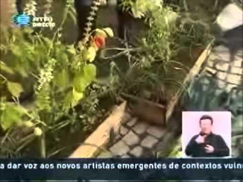 Horta da FCUL_2parte - iniciativa de Permacultura